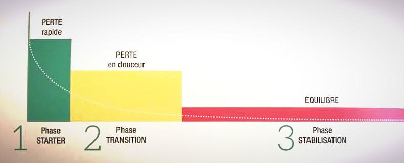 Les 3 phases du programme Energy Diet