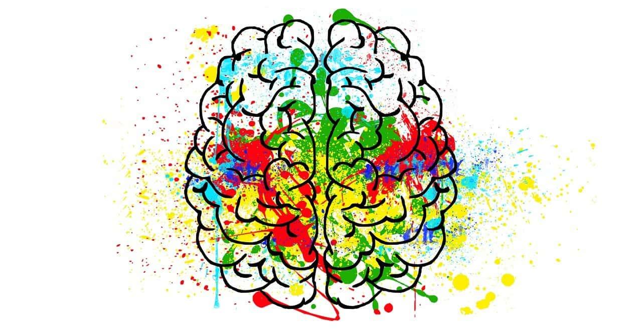 le cerveau en ébullition
